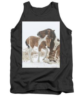 Valentine Filly Tank Top