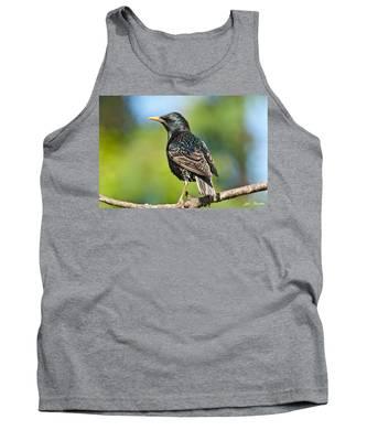 European Starling In A Tree Tank Top