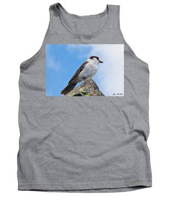 Gray Jay With Blue Sky Background Tank Top