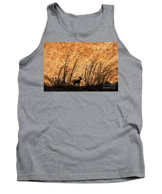 Silhouette Bighorn Sheep Tank Top