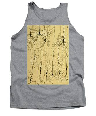 Histological Tank Tops