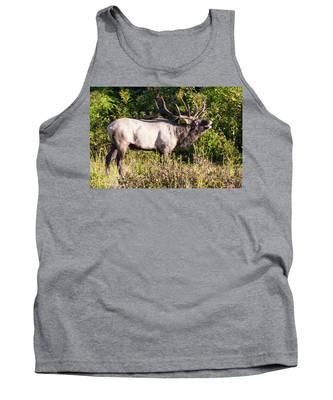 Large Bull Elk Bugling Tank Top