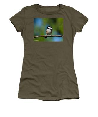 Black Capped Chickadee Perched On A Branch Women's T-Shirt