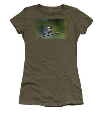Chestnut Backed Chickadee Perched On A Branch Women's T-Shirt