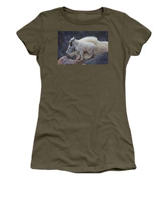Contentment  Women's T-Shirt