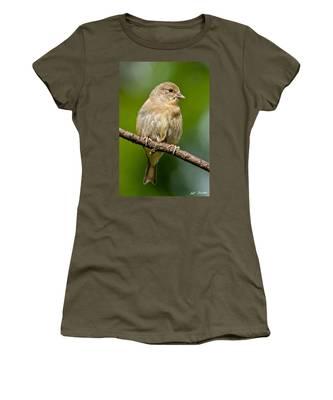 Juvenile American Goldfinch Women's T-Shirt