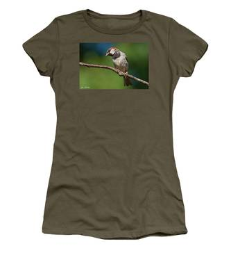 Male House Sparrow Perched In A Tree Women's T-Shirt