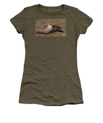 Seal And Pups Women's T-Shirt