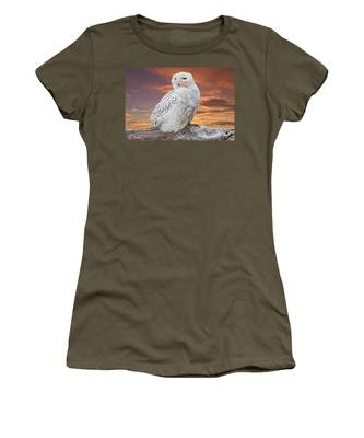 Snowy Owl Perched At Sunset Women's T-Shirt