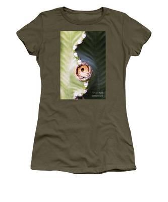 Sunlight Split On Cactus Knot Women's T-Shirt