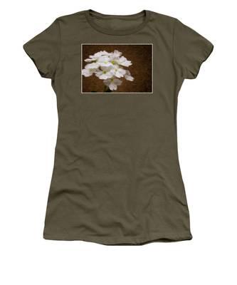 Watercolor Of Daisies Women's T-Shirt