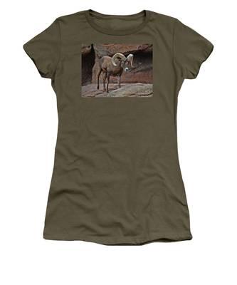 Desert Bighorn Sheep Ram I Women's T-Shirt