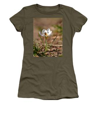 Hoverfly Visitng A Crocus Women's T-Shirt