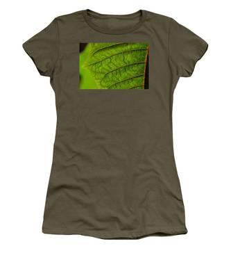 Poinsettia Leaf I Women's T-Shirt