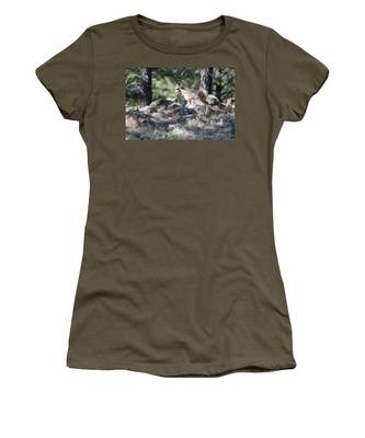 Pronghorn Antelope Fawn Women's T-Shirt