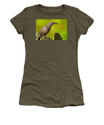 Curve-billed Thrasher On A Prickly Pear Cactus Women's T-Shirt