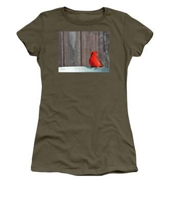 Cardinal Drinking Women's T-Shirt