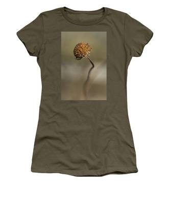 Dried Flower Close-up Women's T-Shirt