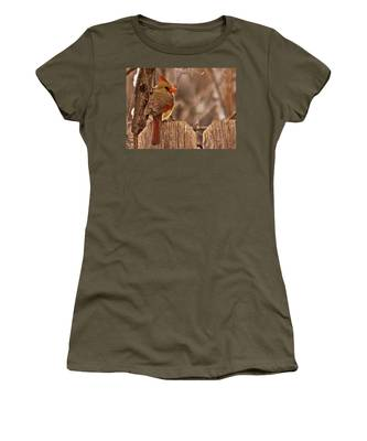Female Cardinal On The Fence Women's T-Shirt