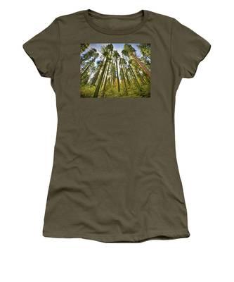 Forest Of Light Women's T-Shirt