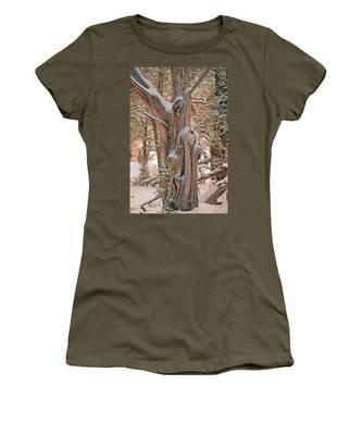 Snowy Dead Tree Women's T-Shirt