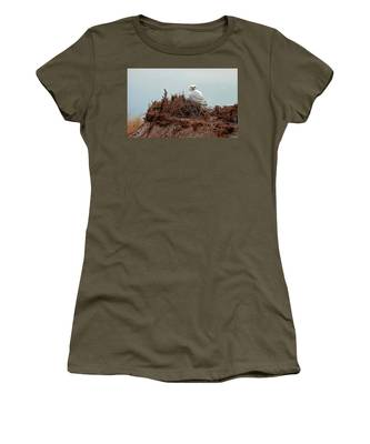 Snowy Owl In The Dunes Women's T-Shirt