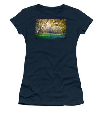 Solitude Under The Sycamore Women's T-Shirt