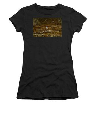 House In The Valley Women's T-Shirt