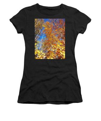 In The Forest At Fall Women's T-Shirt