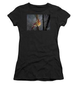 Oh No Not Again Women's T-Shirt