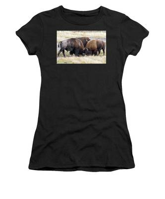 Bison Fight Women's T-Shirt