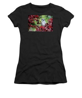 Blue Jay In The Plum Tree Women's T-Shirt