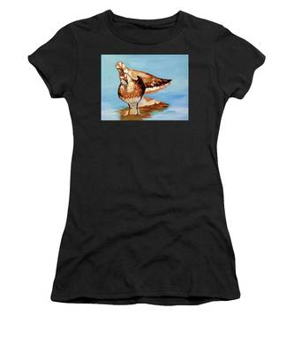 Dowitcher Birds Women's T-Shirt