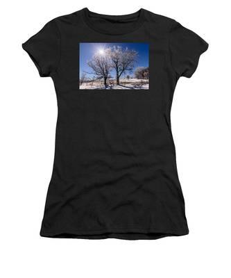 Ice Coated Trees Women's T-Shirt