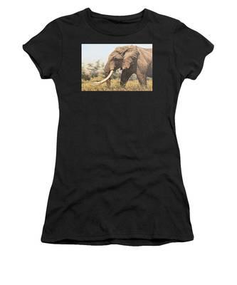 In The Footsteps Of Elders Women's T-Shirt