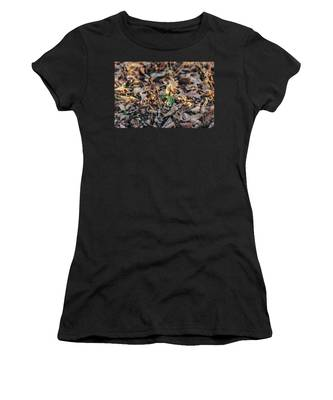 Trillium Blooming In Leaves On Forrest Floor Women's T-Shirt