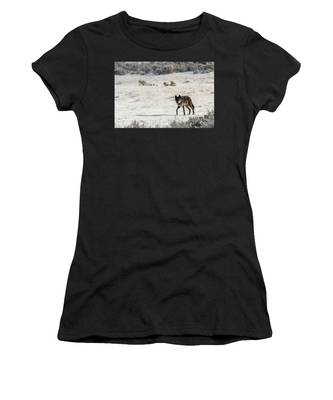 W19 Women's T-Shirt