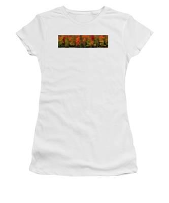 Autumn Fence Line Women's T-Shirt