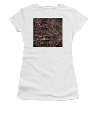 Canoe In The Adirondacks Women's T-Shirt