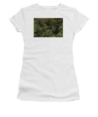 Family Of Gorillas Women's T-Shirt