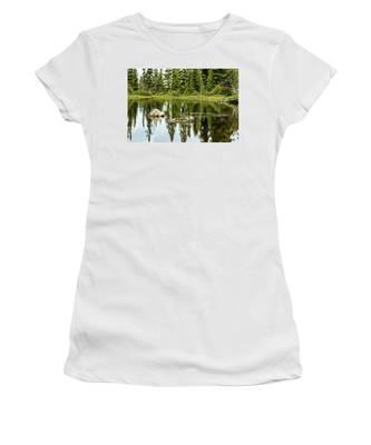 Rocks In A Mountain Pond Women's T-Shirt