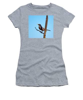 Robin Taking A Break Women's T-Shirt