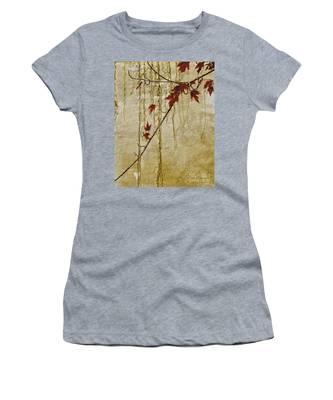 Stone Walled Women's T-Shirt