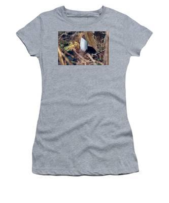 Yahoo Falls Frozen 1 Women's T-Shirt