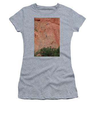 Coming Down The Mountain Women's T-Shirt
