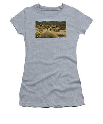 Desert Beauty Women's T-Shirt