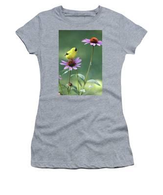 Goldfinch On A Coneflower Women's T-Shirt