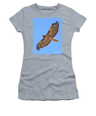 Red Tailed Hawk In Flight Women's T-Shirt