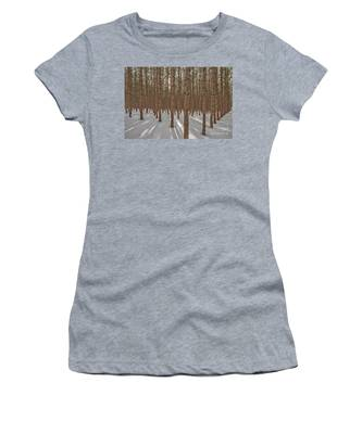 Sunlight Filtering Through A Pine Forest Women's T-Shirt