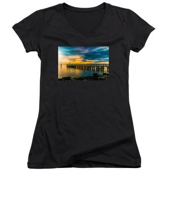 Birds On The Dock Women's V-Neck